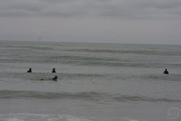 West Central Florida Gulf Surf Report Photography. Featuring photographs from standout surfing spots along the Gulf Coast. Photo taken and posted on February 13 2019, 19:04