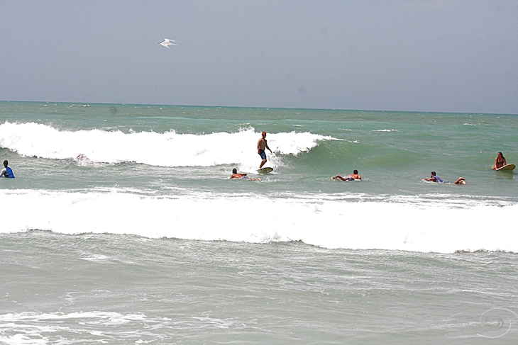 West Central Florida Gulf Surf Report Photography. Featuring photographs from standout surfing spots along the Gulf Coast. Photo taken and posted on July 15 2019, 01:35