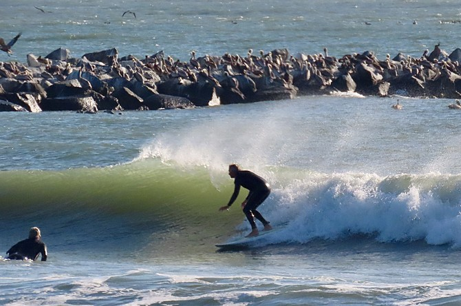 Florida Beach report surf photo taken and posted on February 23 2020, 15:32